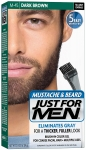 Just For Men Brush-in Color Gel (Sakal Renklendirici Boya)