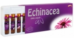 Sepe Natural Echinacea Oral Liquid